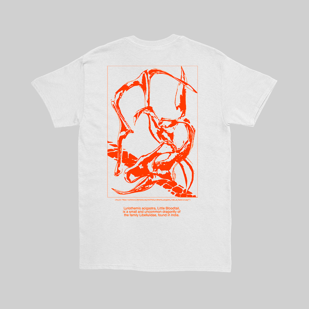 everpress_custom_t-shirts_best_graphic_tees_2019IMAGINATIO