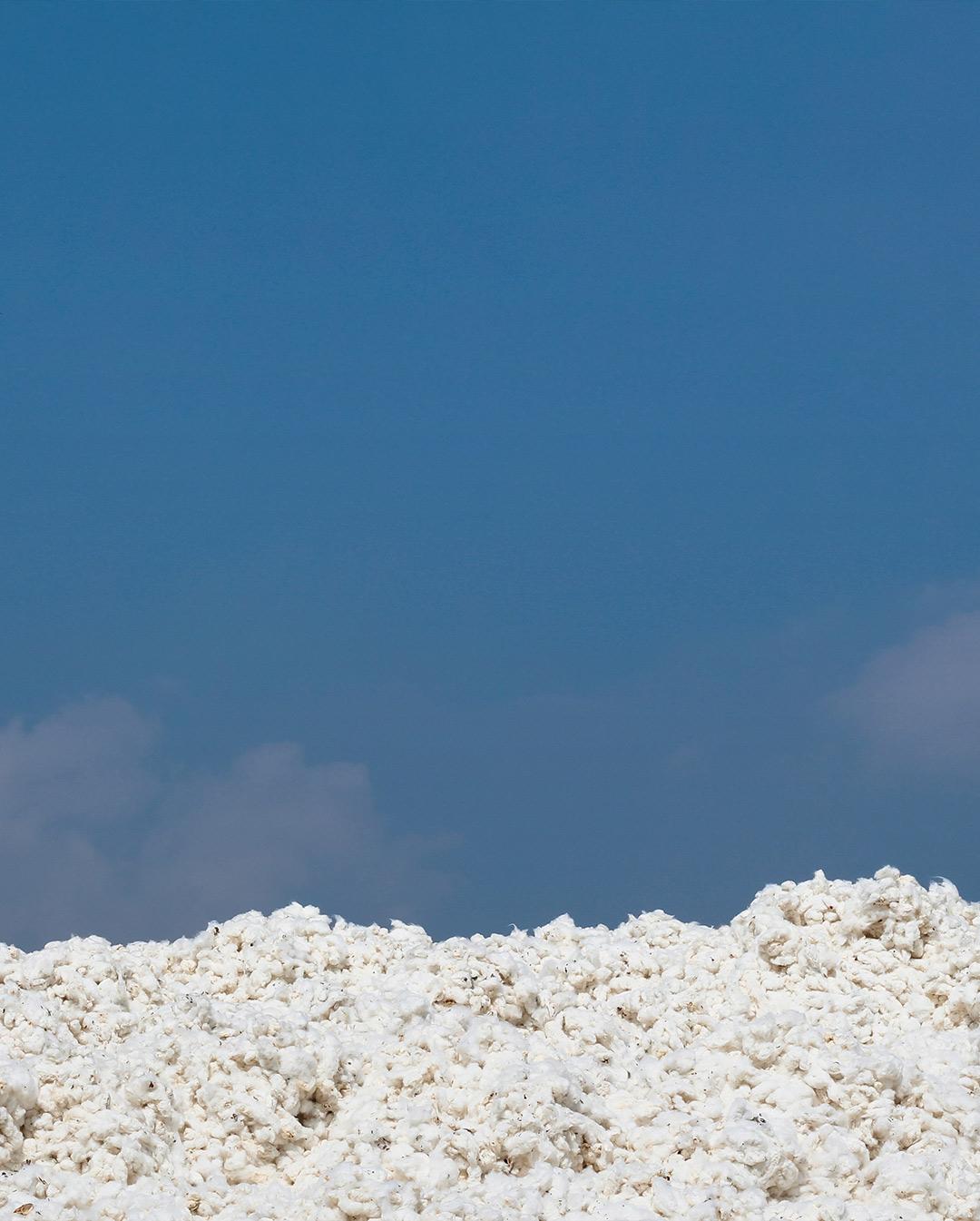 supplycompass-cotton-mound-everpress-blog